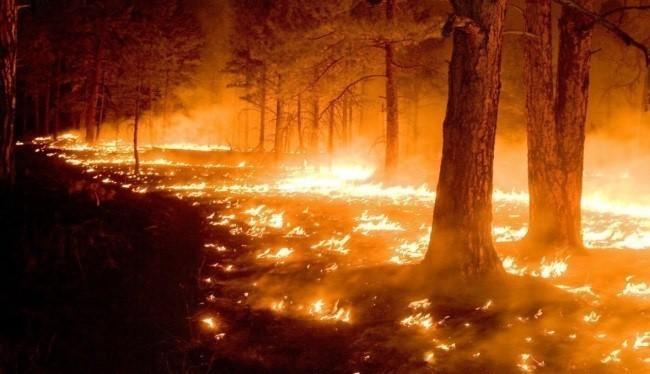 ГПСО г. Ясиноватая предупреждает об уголовной ответственности за преступления связанные с пожарами