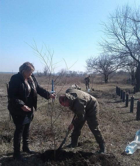 Благоустройство территории в поселке Минеральное