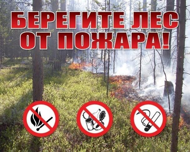 ГПСО г. Ясиноватая напоминает! Правила пожарной безопасности по предупреждению пожаров в лесных насаждениях!