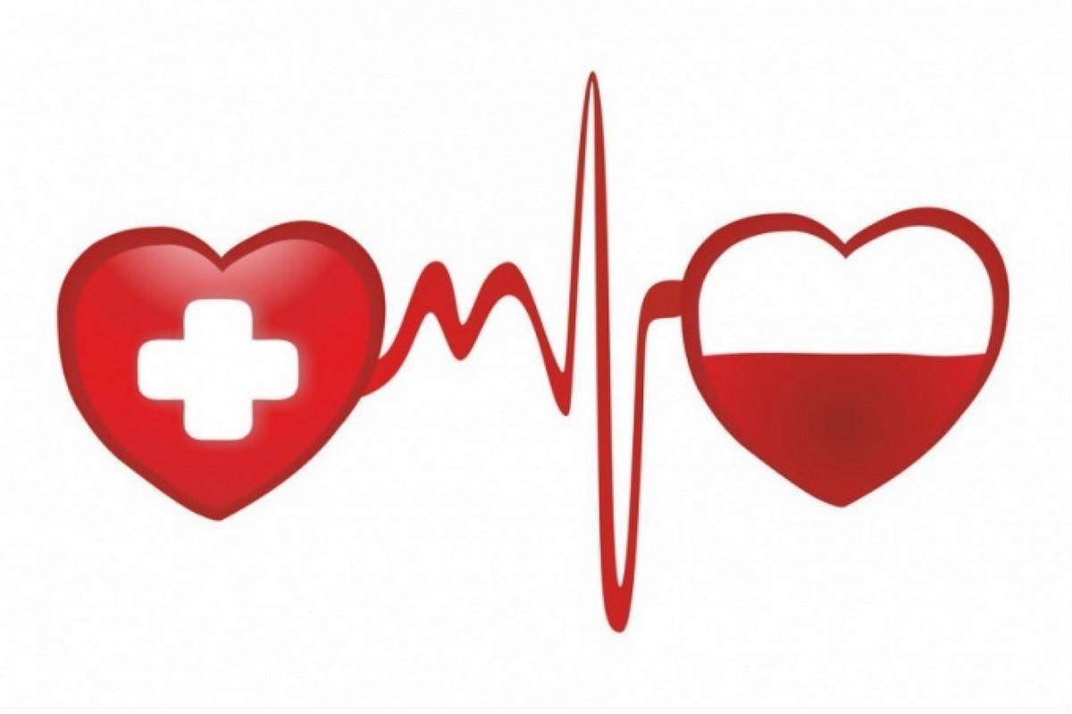 14 июня - Всемирный деньдонора крови