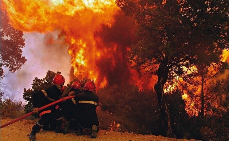 Государственный пожарный надзор г. Ясиноватая обращается к жителям и гостям города быть предельно осторожными в поведении в лесных массивах