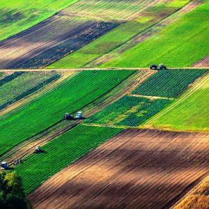 Свободные земельные участки пашни в Ясиноватском районе