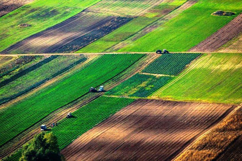 сельскохозяйственные земли, пашня