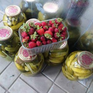 Открытие цеха по производству консервированных овощей и фруктов