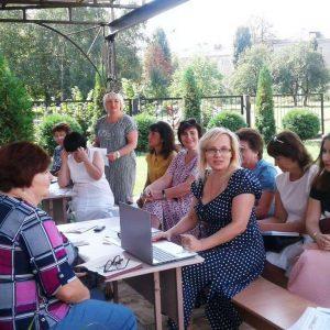 Заседания  методических объединений учителей