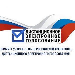 Жители ДНР могут принять участие в тренировке электронного голосования