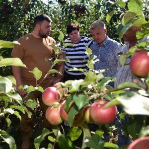 Денис Пушилин провел выездное совещание с аграриями на территории суперинтенсивного яблоневого сада