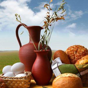 Поздравление главы администрации Д.С. Шевченко с Днем работника сельского хозяйства и перерабатывающей промышленности
