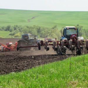 Агробизнес на линии огня. Как в Ясиноватой смогли за год увеличить площадь сельхозугодий наполовину